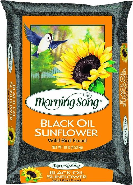 Morning-Song-11996-Black-Oil-Sunflower