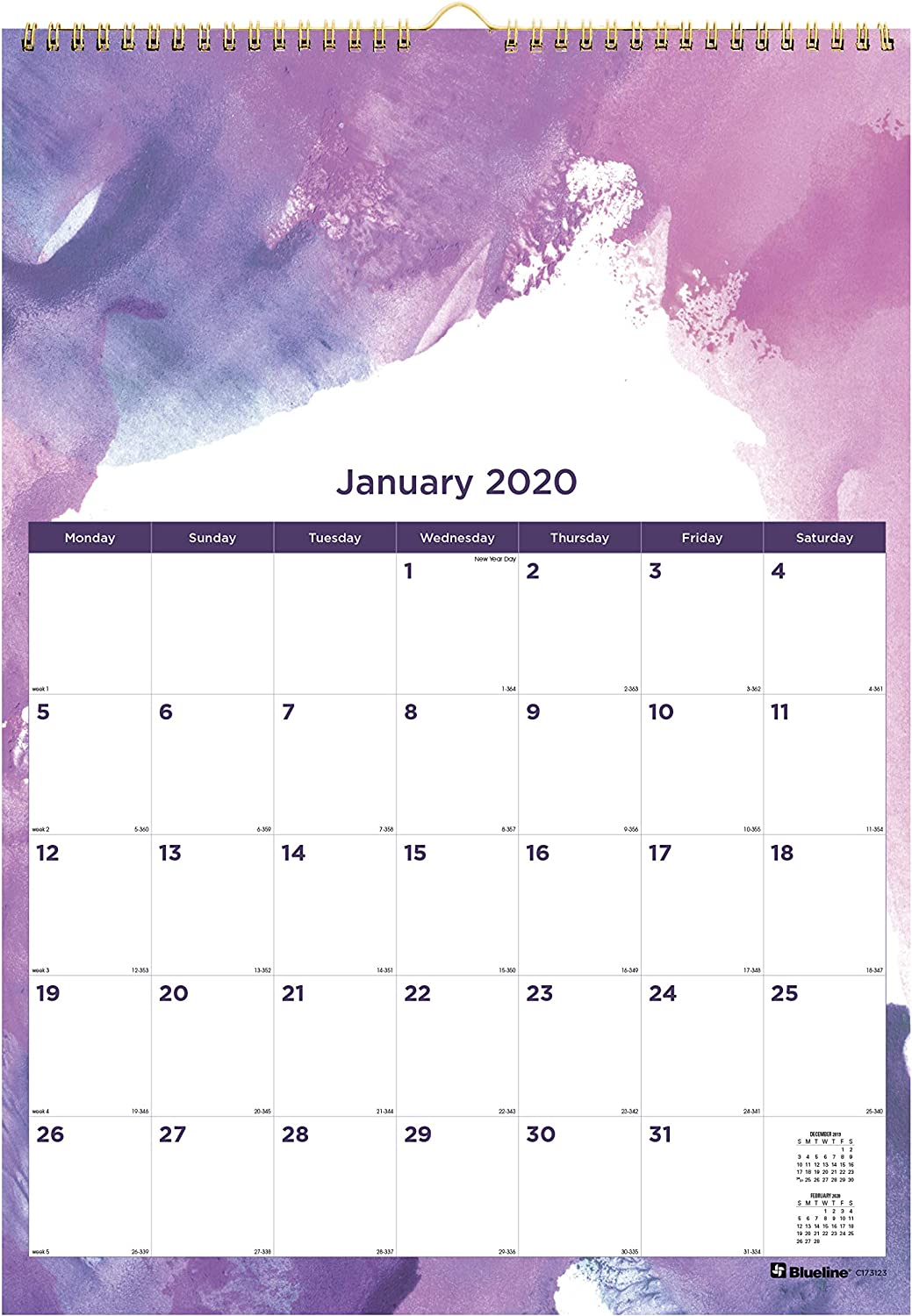 Blueline 2020 Monthly Wall Calendar, 12 x 17 inches, Passion Paintstroke Design (C173123-20)