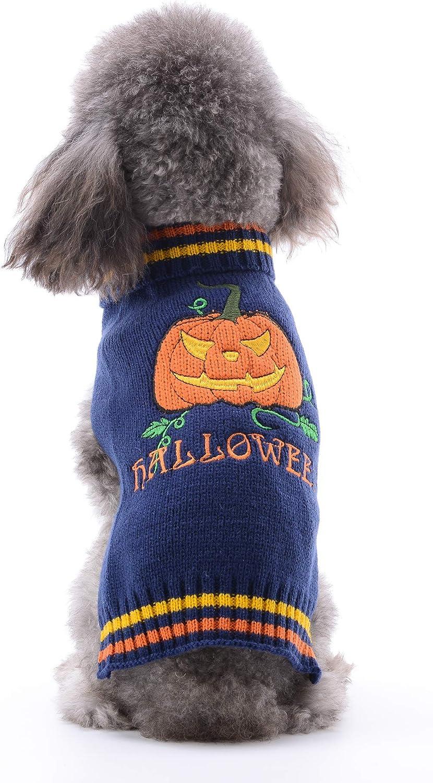 DOGGYZSTYLE - Jersey de Calabaza para Halloween, Perros y Gatos