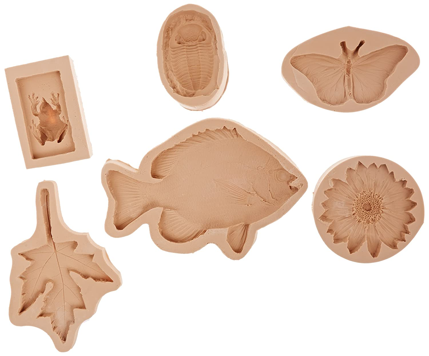 Sax Nature Impressions Mold includes Maple, Butterfly, Trilobite, Frog, Sunflower and Fish (Set of 6 ) School Specialty 404867