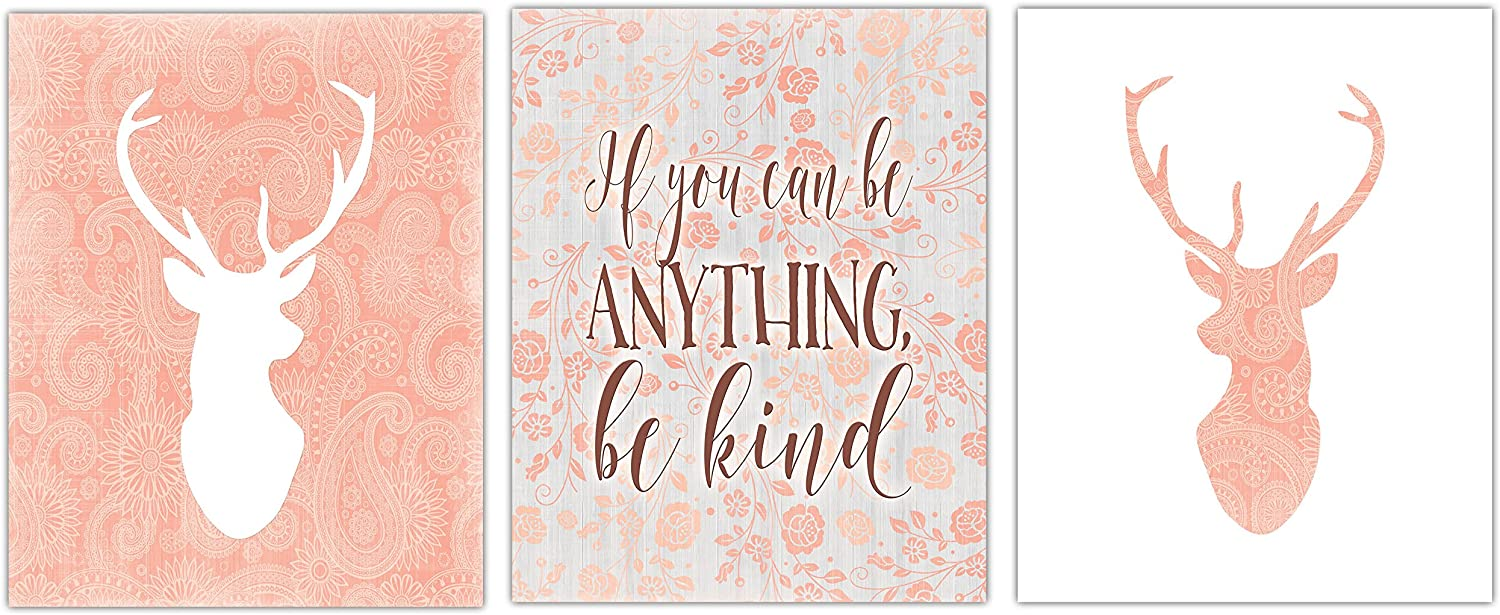 Amazon Com Gango Home Decor Pink Coral Floral Paisley Deer Silhouette And If You Can Be Anything Be Kind Set Perfect For A Nursery Three 11x14in Unframed Paper Posters Posters Prints