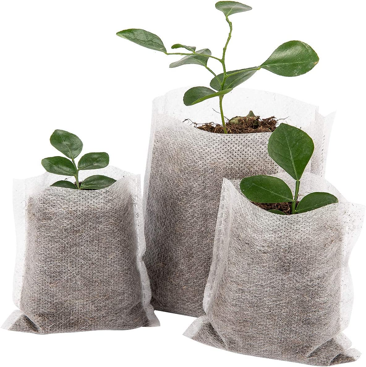 Biodegradable bags Vegetable Seedling Pouch Non-Woven 10pcs