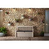Koll Living Gartenbank mit Kissentruhe - 265 Liter wetterfester Stauraum - der Blickfang im Garten