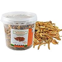 FINCA CASAREJO Mix de Insectos Secos. Alimento deshidratado