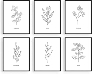 Kitchen Herbs Wall Art Decor for Kitchen - by Haus and Hues | Herb Art Prints and Kitchen Signs Wall Decor | Herb Prints Kitchen Wall Art Kitchen Prints for Wall Herb Decor (8