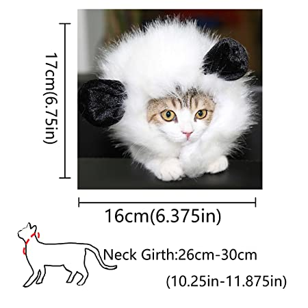 Amazon.com : ThinkPet Cute Comfortable Party Festival Costume Cat Kitten Lion Mane Wigs White : Pet Supplies