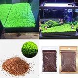 Aquarium Plants Seeds Aquatic Double Leaf Carpet Water Grass, for Fish Tank Rock Lawn Garden Decor