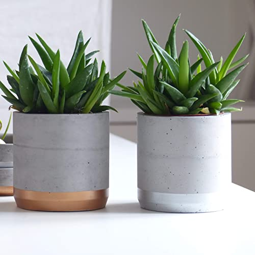 Amazon.com: Gray and copper large round planter, Macetas para plantas, Large planter: Handmade