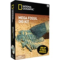 National Geographic Mega Fossil Mine – DIG Up 15 Véritable fossiles –