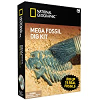 Mega Fossil Mine – Dig Up 15 Real Fossils with NATIONAL GEOGRAPHIC