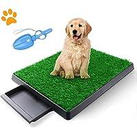 TSIANHUZY - Almohadilla de hierba para perro con bandeja, pasto artificial, para uso en interiores y exteriores…