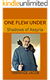 One Flew Under: Shadows of Assyria (Shadows of Time Book 1)