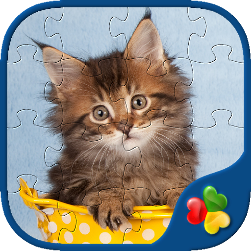 Cute Cats - Real Cat and Kitten Picture Jigsaw Puzzles Games for - Cats Mouser