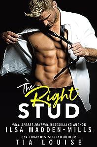 The Right Stud: a sexy romantic comedy