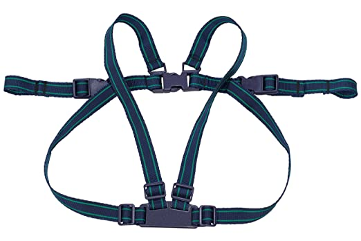 Safety 1st Safety Harness, Blue: Amazon.co.uk: Baby