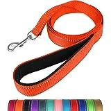 Taglory Nylon Dog Leash 6ft, Soft Padded Handle Pet Reflective Leashes for Medium Large Dogs Walking & Training, Orange