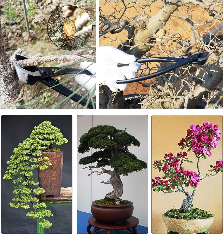 Demoke Bonsai Tool Set, Stainless Steel Master Bonsai Tool Kit Roll with Canvas Storage Bag/Bonsai Scissors Carbon Steel Shear Cutter Scissor Kit Gardening Plant Tools F