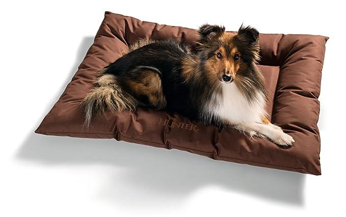 Hunter - Cama modelo Gent con Silverplus para perros: Amazon.es: Productos para mascotas