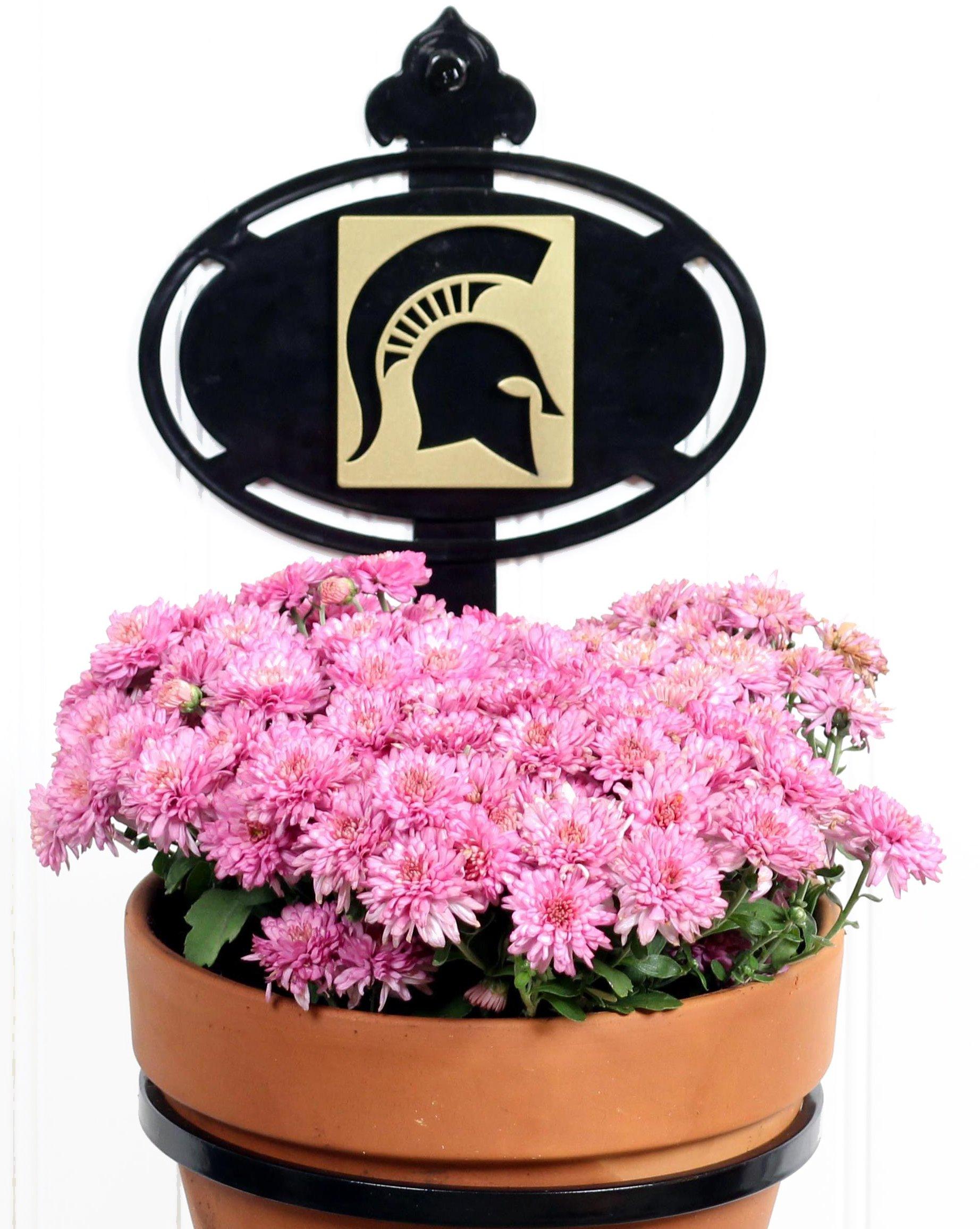 Henson Metal Works Michigan State University Collegiate Logo Wall Mounted Flower Pot Holder by Henson Metal Works