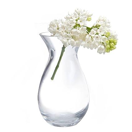 Amazon Chive George Shape 2 Unique Clear Glass Flower Vase