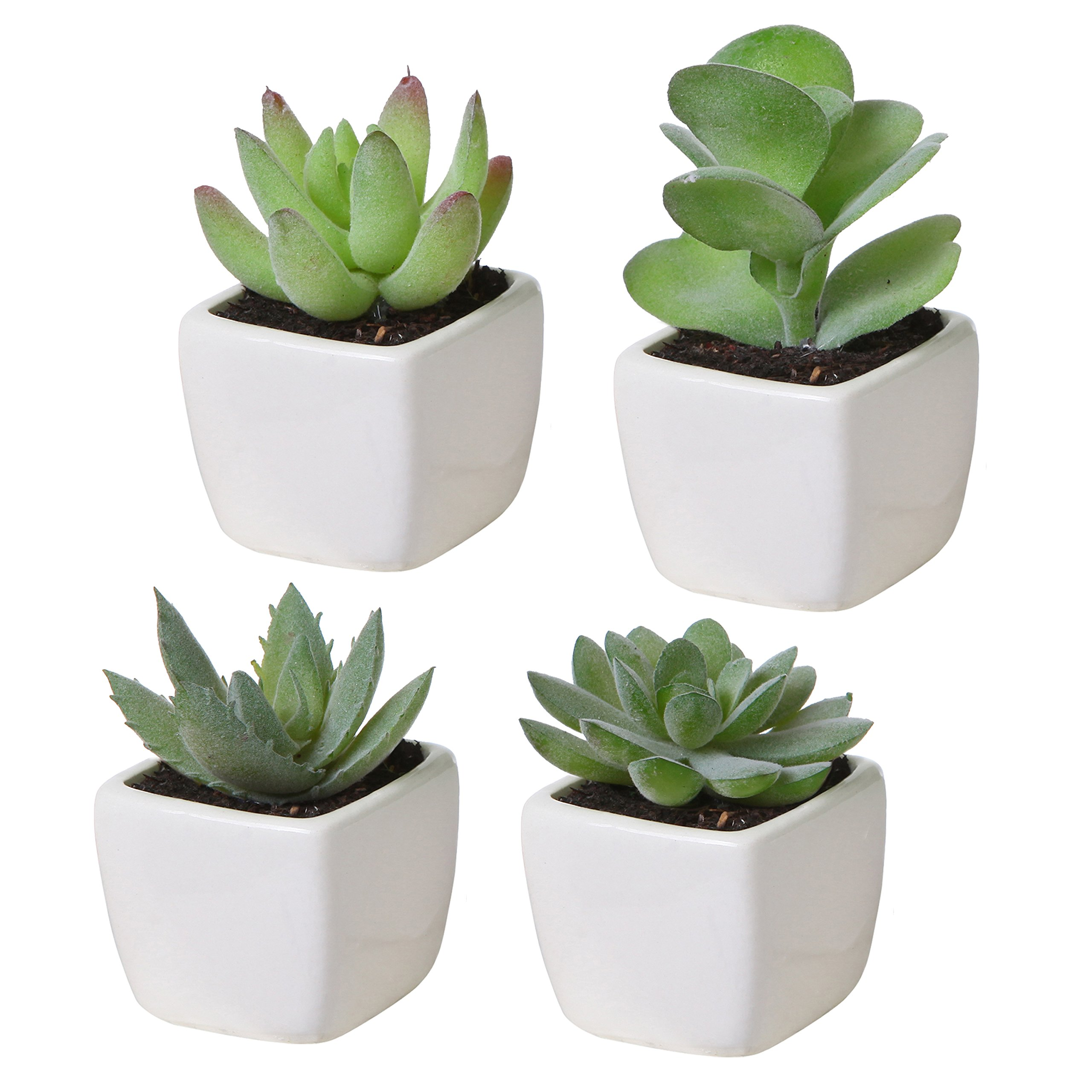 MyGift Set of 4 Mini Assorted Green Artificial Succulent Plants in Square White Ceramic Planters