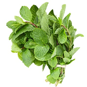 fresh mint leaves 3 oz amazon com grocery gourmet food