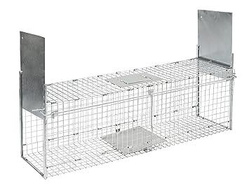 Trampa Kerbl plegable para animales con 2 entradas 100 x 28 x 28 cm, 299676: Amazon.es: Productos para mascotas