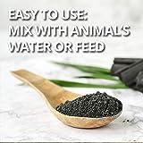 1qt VetDtoxTM Activated Charcoal Powder for Pets