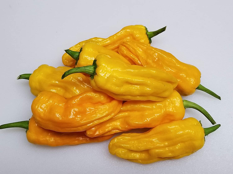 Yellow Pepperoncini Pepper Seeds Italian original pepper Green Pepper