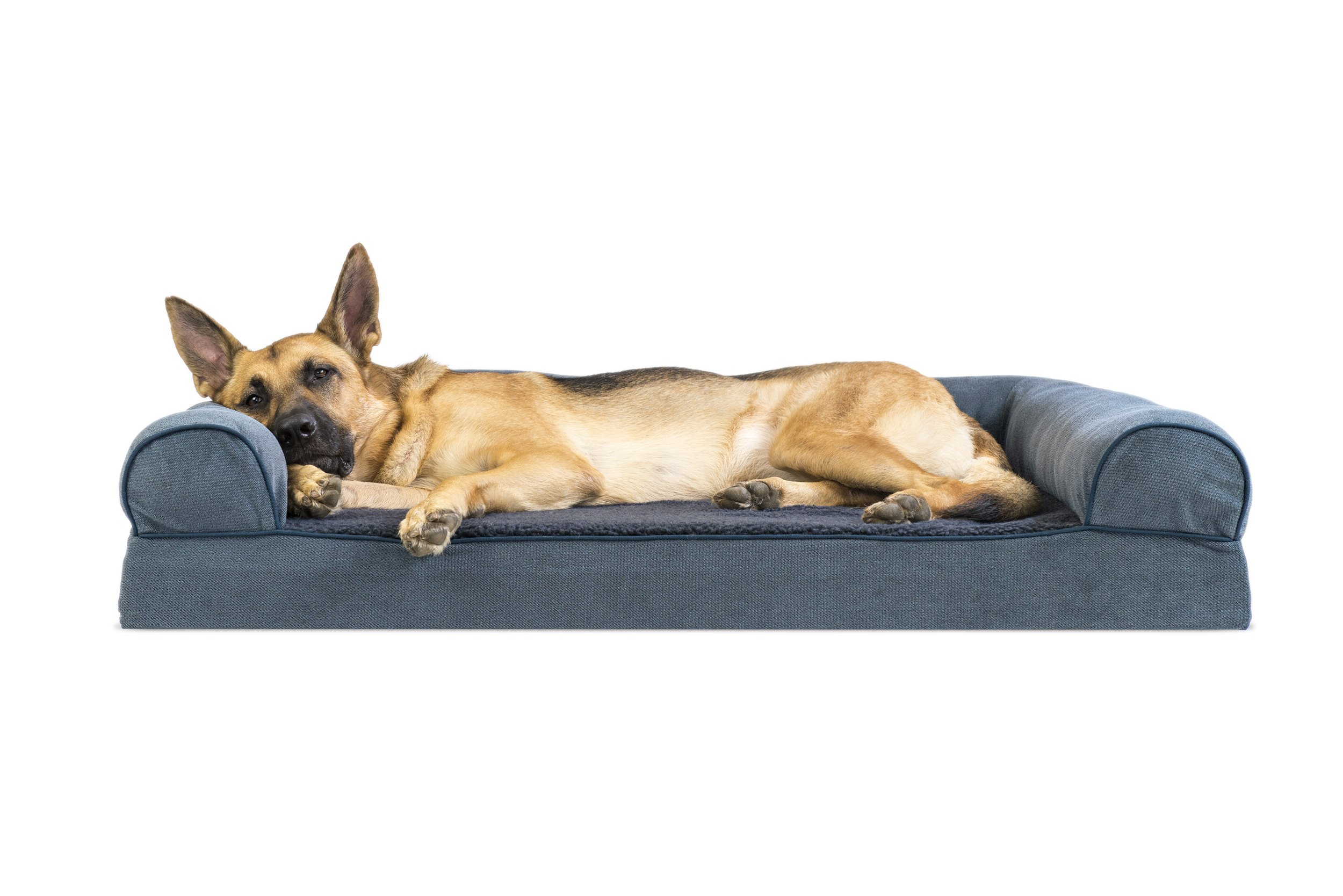 Amazing Details About Xx Large Big Dog Bed Sofa K9 Pet Warm Couch Memory Foam Orthopedic Cushion Jumbo Ibusinesslaw Wood Chair Design Ideas Ibusinesslaworg