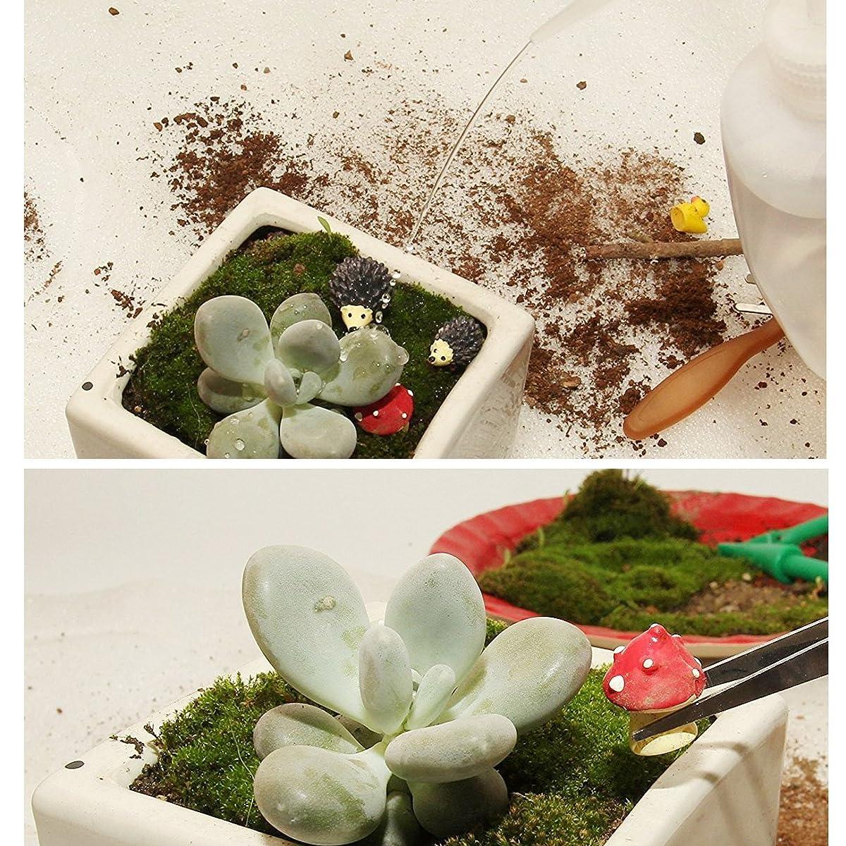 Btibpse Succulent Transplanting Mini Garden Planting Hand Tools Set (14)
