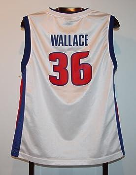 NBA Trikot Jersey-Camiseta de Baloncesto Rasheed Wallace Detroit Pistons M: Amazon.es: Deportes y aire libre
