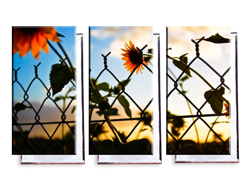 Sonnenblumen im Maschendrahtzaun - Dreiteiler (120x80 cm) - Bilder ...