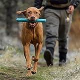 RUFFWEAR   Gnawt a Stick Durable Dog Toy, Dandelion Yellow, One Size