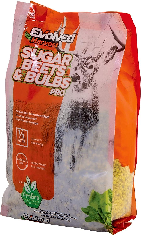 Evolved Harvest Sugar Beets & Bulbs Pro 2 Lb Bag | Sugar Beet & T-Raptor Bulb Food Plot Seed, Covers 1/4 Acre