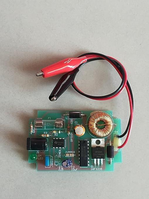 Amazon.com: 12 V Cargador de batería de ácido de plomo ...