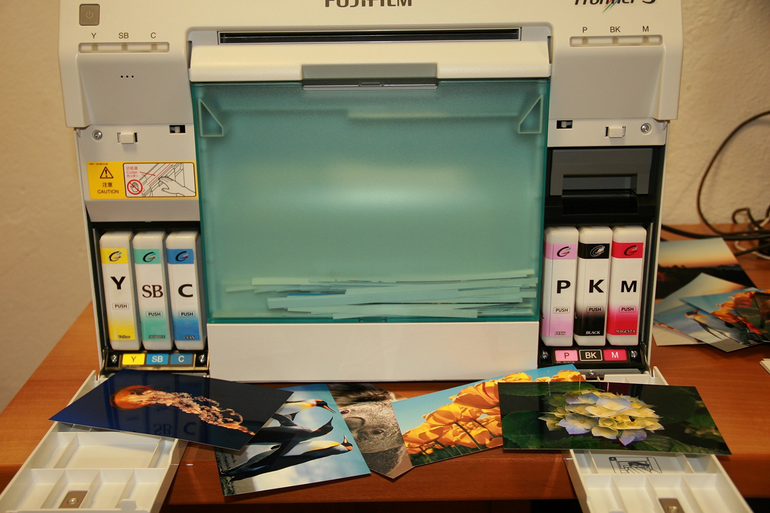 NEW 6-COLOR FujiFilm VIVIDIA Ink Cartridge Frontier-S DX100 Printer