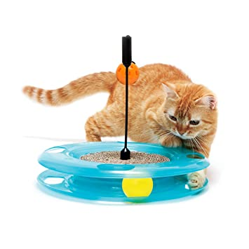 Amazon.com: Kitty City gato juguetes, varita para gatos ...