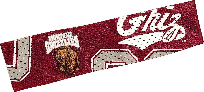 NCAA Montana Grizzlies FanBand
