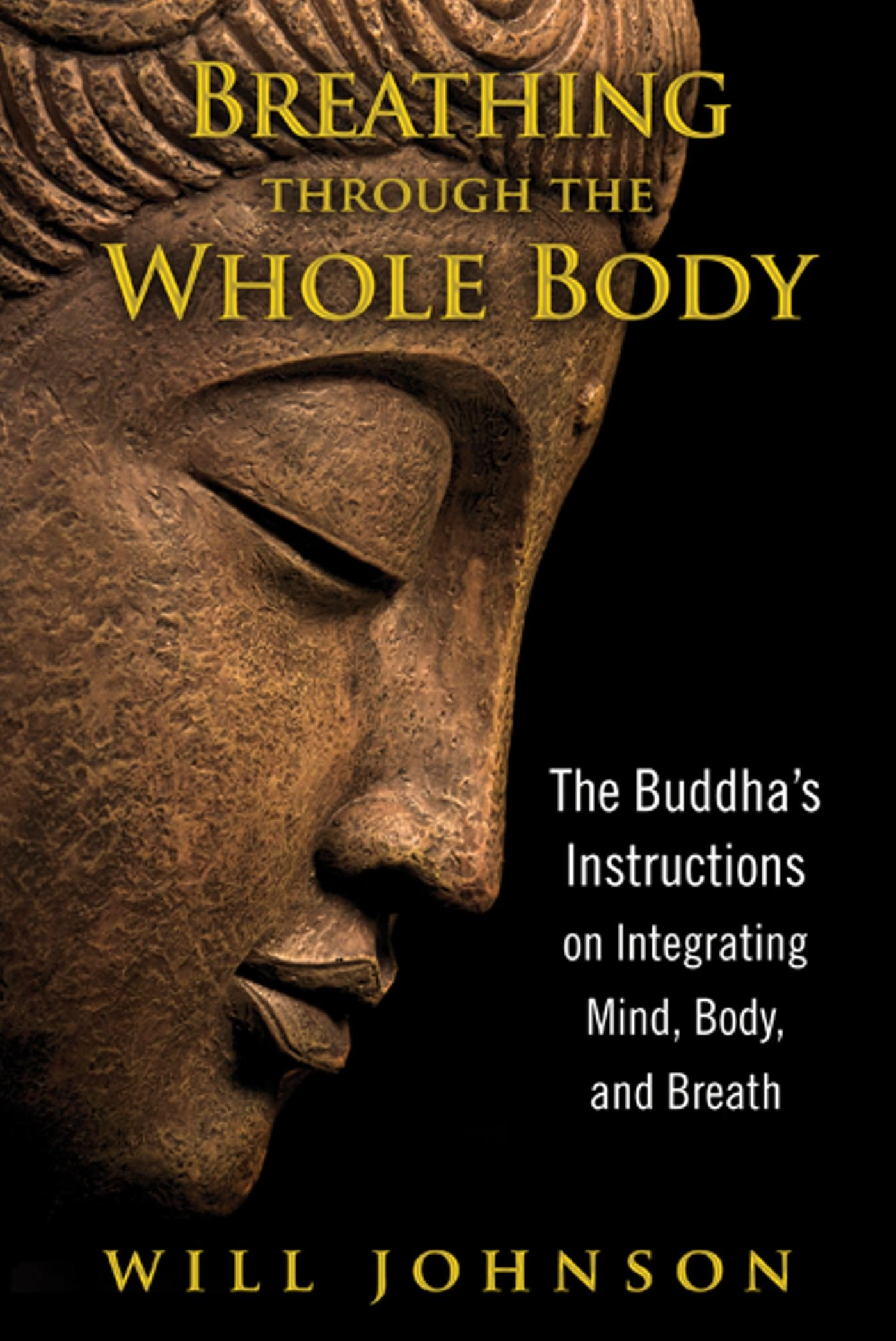 Breathing through the whole body the buddhas instructions on breathing through the whole body the buddhas instructions on integrating mind body and breath will johnson 9781594774348 amazon books fandeluxe Images