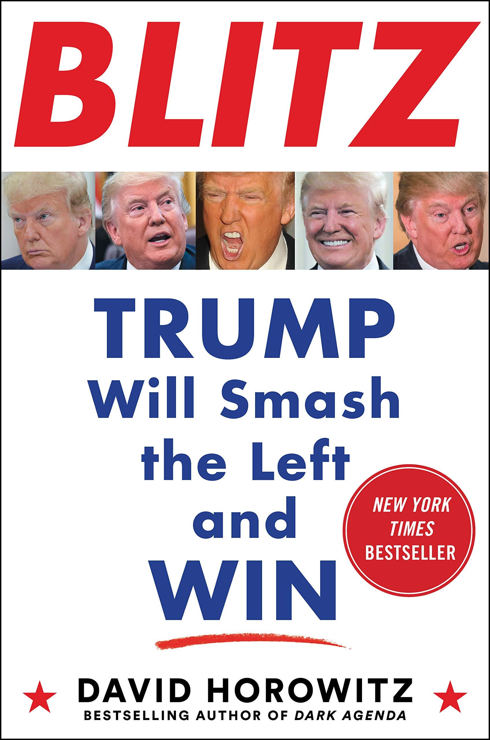 BLITZ: Trump Will Smash the Left and Win pdf epub