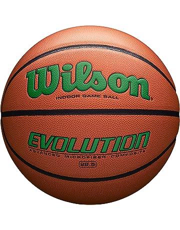 7c148f43597 Wilson Evolution Game Basketball