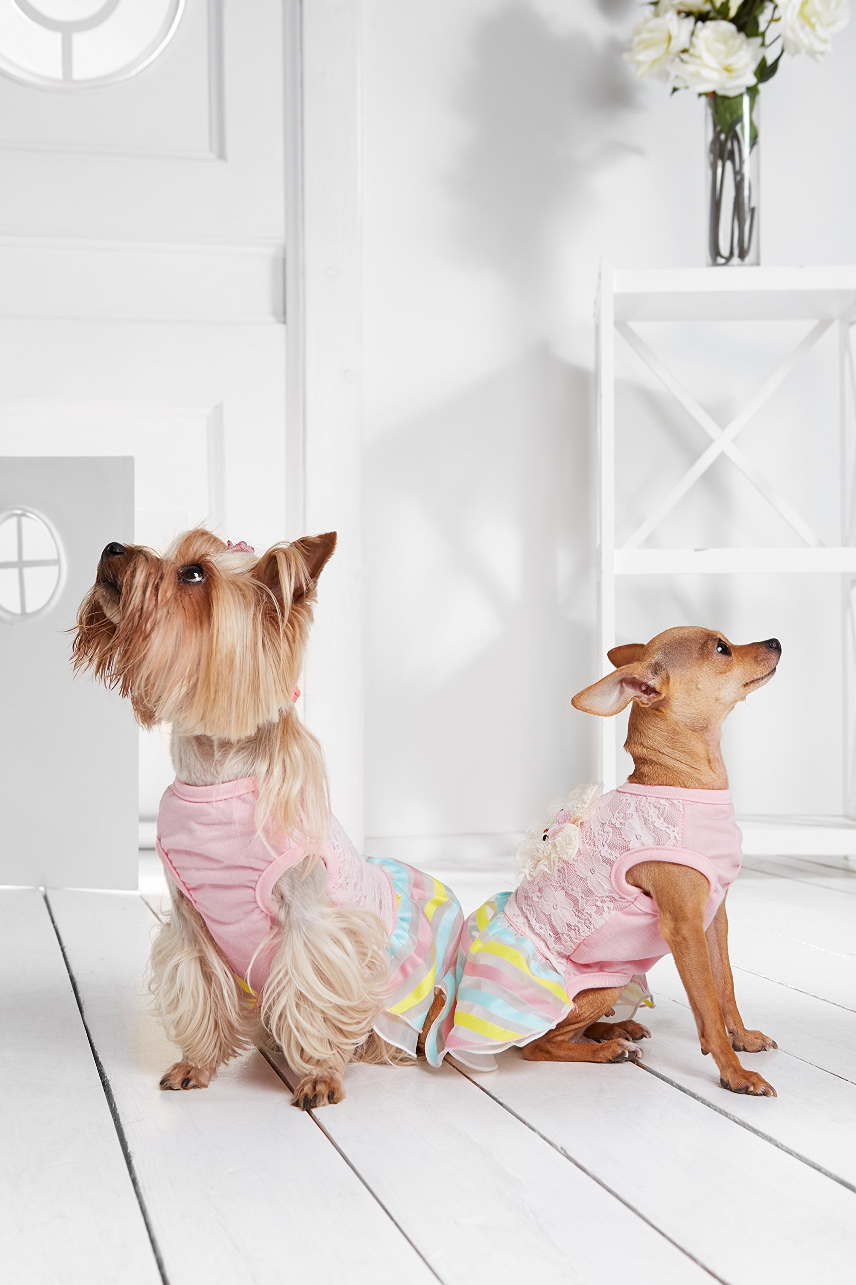 """Small Dog Floral Lace Dress Bunny Patch Striped Skirt Dogs Cotton Summer Clothes (Toy Plus: 10"""" / 5-9 lbs, Pink)"""