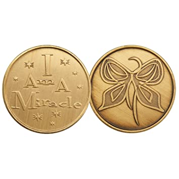 I Am A Miracle Butterfly Bronze Aa Alcoholics Anonymous Aca Al