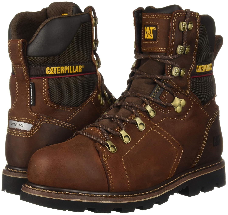 56befc8c4e0 Caterpillar Men's Alaska 2.0 8