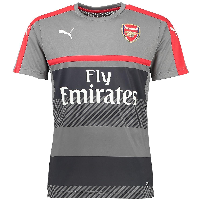 2016-2017 2016-2017 2016-2017 Arsenal Puma Training Jersey (grau) B01I041B0A Herren Erschwinglich d8d8ad