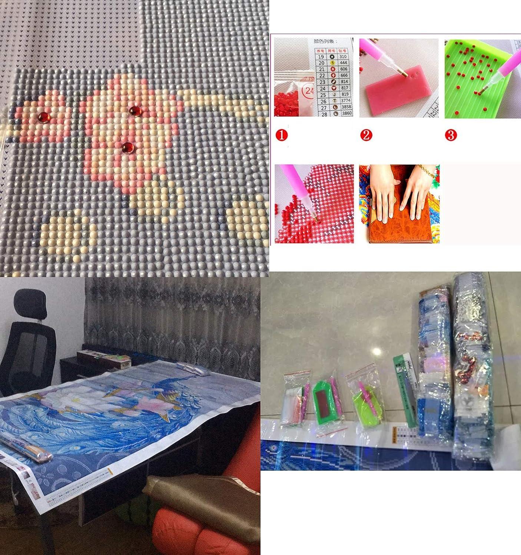 DIY 5D Diamant Painting Fraise Plein Kits Artisanat Art Broderie Point de Croix Pied Maison Mural et Entr/ée D/écorations SWECOMZE Diamond Painting Set