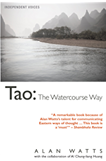 Wisdom of insecurity a message for an age of anxiety ebook alan w tao the watercourse way fandeluxe Images
