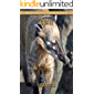 Coati: Amazing Pictures & Fun Facts on Animals in Nature