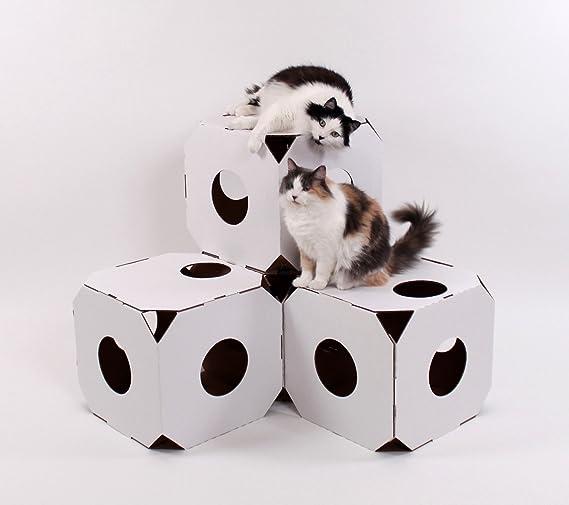 Catty Stacks Cubitos para gatos (duraderos, modulares), fabricados en Estados Unidos: Amazon.es: Productos para mascotas